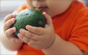 המלצות לתזונה טבעית ראשונית לתינוק