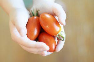 מדריך מעשי לעידוד ילדים לאכילת ירקות