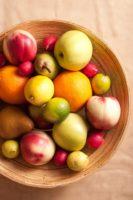בשבח פירות שנשתבחה בהן ארץ ישראל