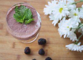 תזונה באירה לעונת האביב שחר סמיט תזונה הטבעית