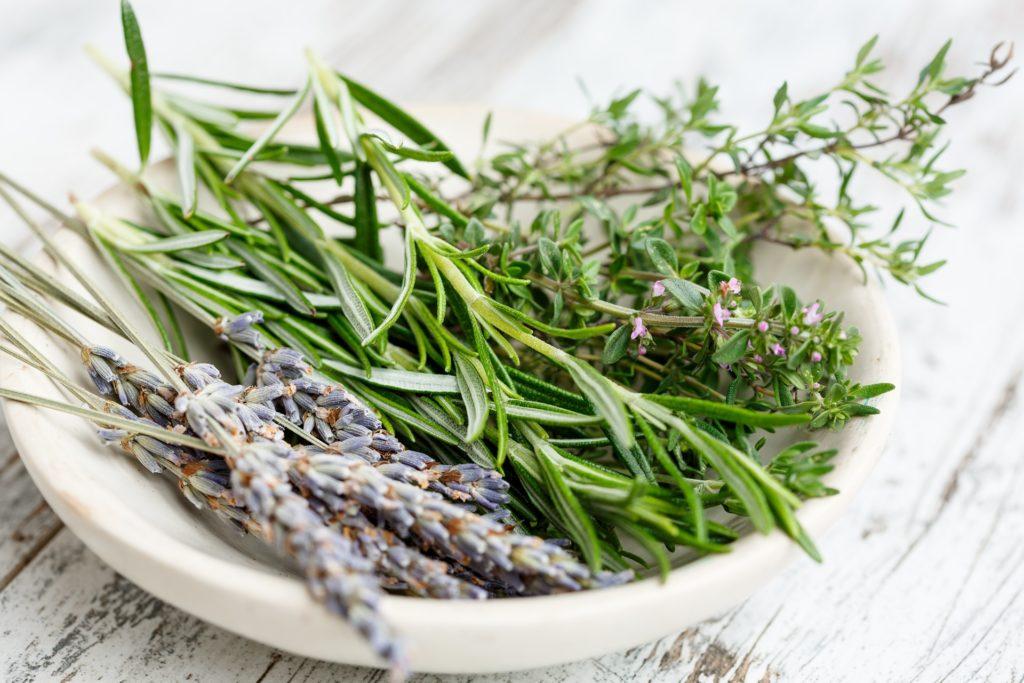 צמחי מרפא שחר סמיט תזונה טבעית