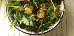 שחר סמיט סלט עלים ירוקים תזונה בריאה