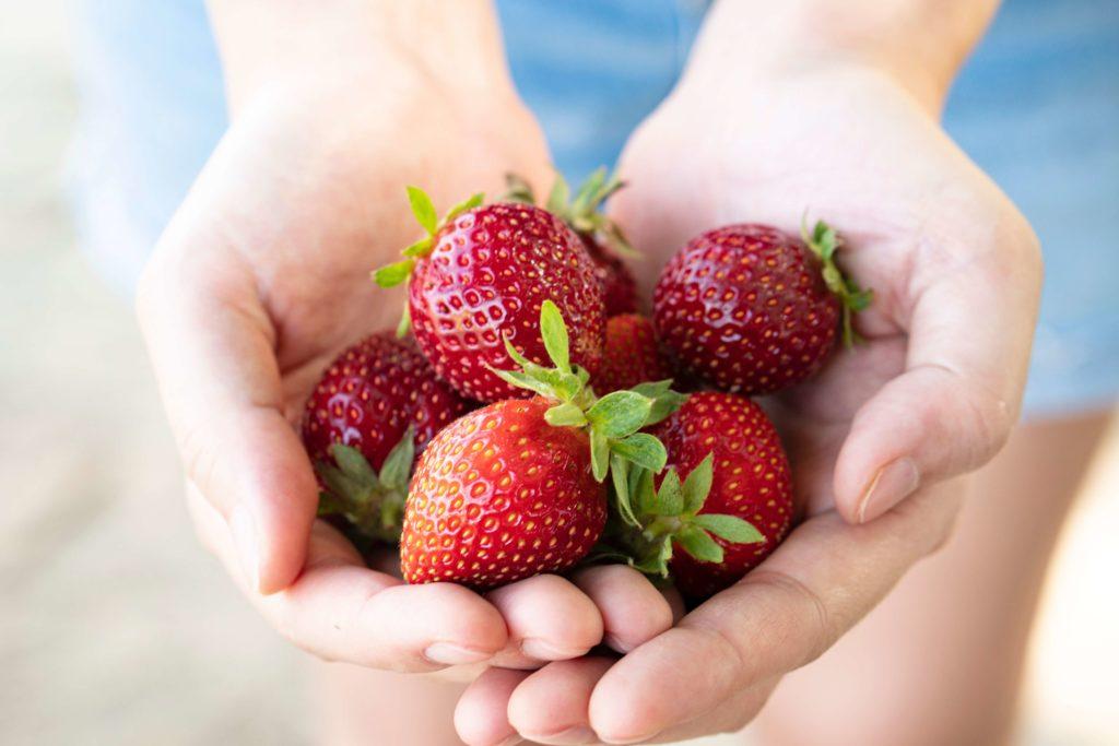 לאכול בריא בהריון שחר סמיט תזונה בריאה והרזייה בריאה