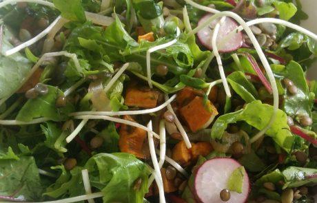 איך לאכול ירקות חיים גם בימים קרים וחורפיים?