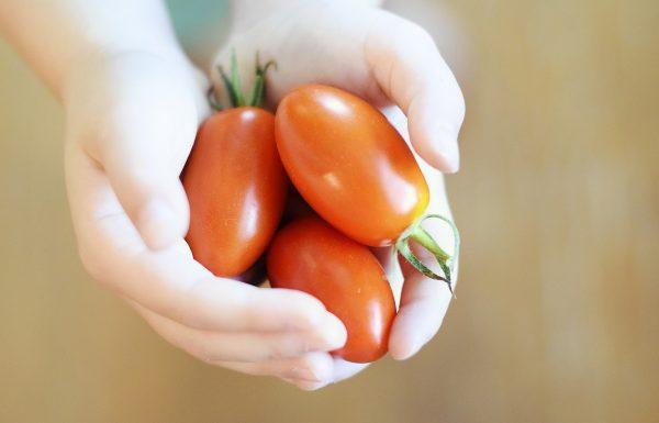 איך לעודד ילדים לאכול יותר ירקות?
