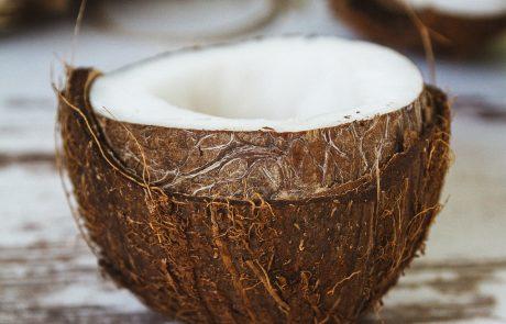הוקוס קוקוס – נפלאות שמן הקוקוס